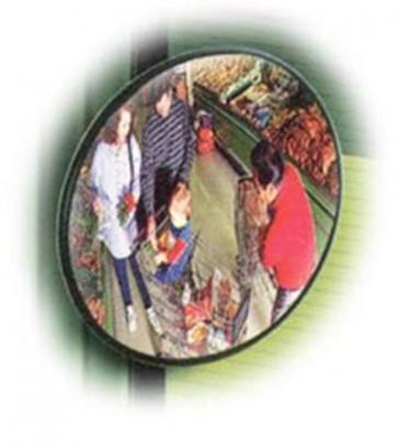 Anti Diefstalspiegel 45 cm